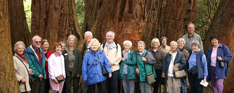 Friends of Westonbirt Arboretum visit to the Annesley Garden Castlewellan